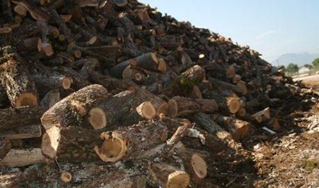 Tarifs bois de chauffage Toulon